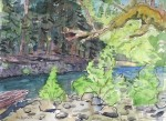 Canyon Camp, Elwha plein air study, 2011, 