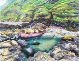 Pink Lava Tidepool, Tokatee
