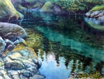 """""""South Fork SnoqualmieRiver"""""""