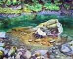 """""""Soldeuck River Clarity"""""""